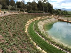 giardini acquatici05