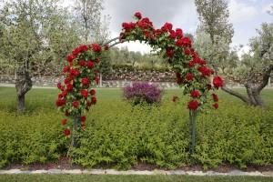 giardino02
