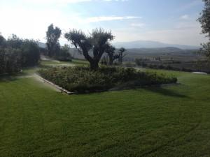 giardino10
