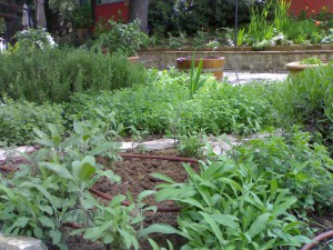 irrigazione04